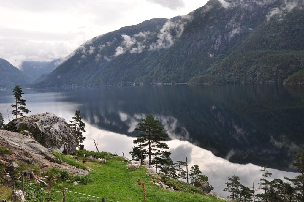 Norvegijos fiordai užburia ramybe
